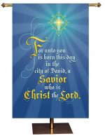 Born this Day in the City of David Christmas